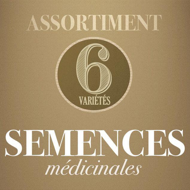 ASSORTIMENT DE MEDICINALES