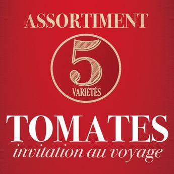 ASSORTIMENT DE TOMATES: INVITATION AU VOYAGE