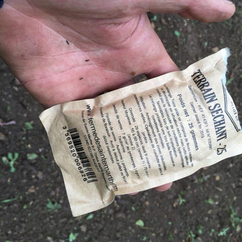 Comment semer une prairie fleurie ferme de sainte marthe - Comment reconnaitre physalis comestible ...