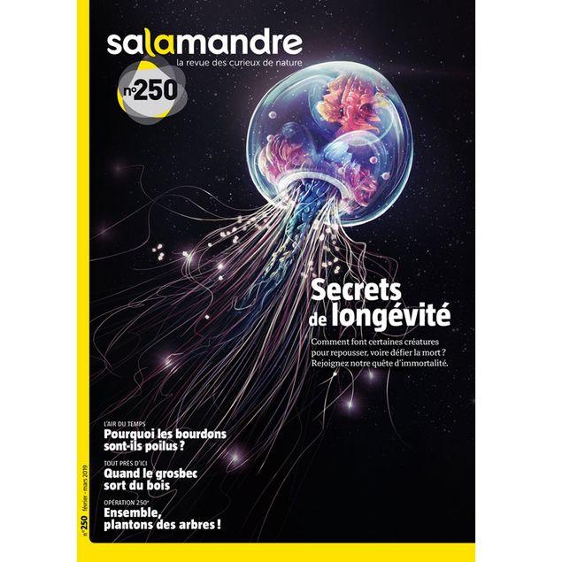 MAGAZINE Salamandre n250 Secrets de longévité