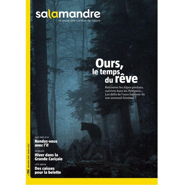 MAGAZINE Salamandre n255 Ours, le temps du rêve